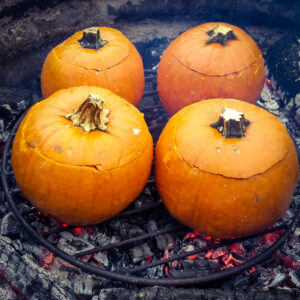 Pumpkins cooked atop a grate on a campfire